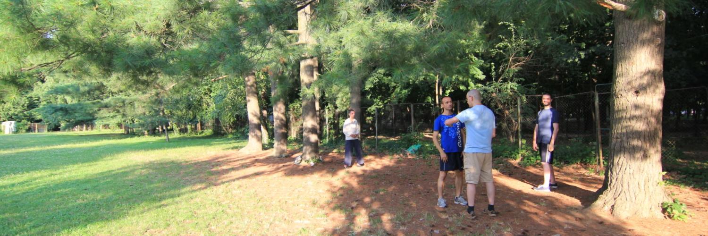Antrenament Tai Chi in parcul Herastrau