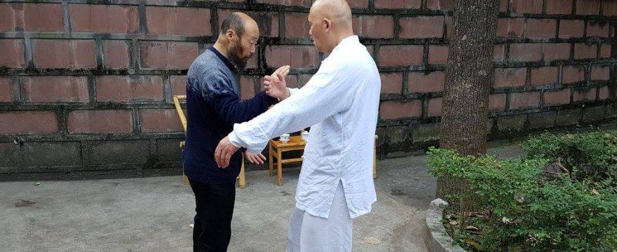 Tehnicile de practica din Tai Ji Quan