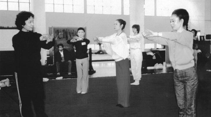 Doamnele din artele martiale chinezesti