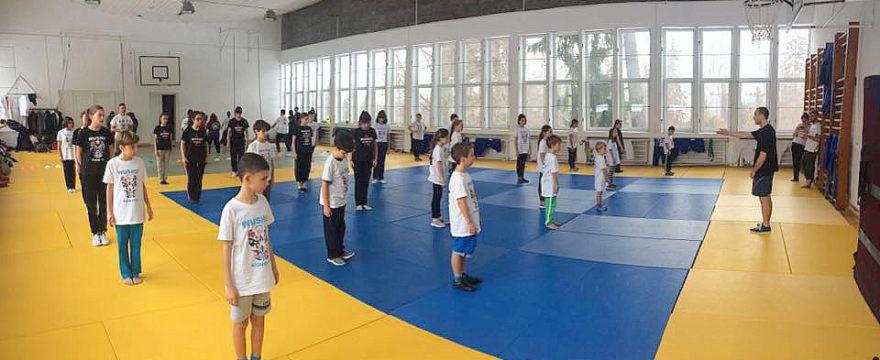 Cursuri de arte martiale (Wushu / Kung Fu) pentru copii